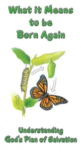 Born Again booklet cover thumbnail